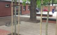 Centrum Badań Strukturalno - Funkcjonalnych Człowieka Uniwersytetu Szczecińskiego 2 czerwca 2015
